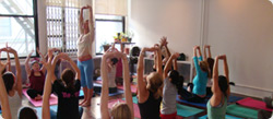 Yoga Teachers & Schools