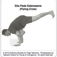 Eka-Pada-Galavasana-Flying-Crow-300x312